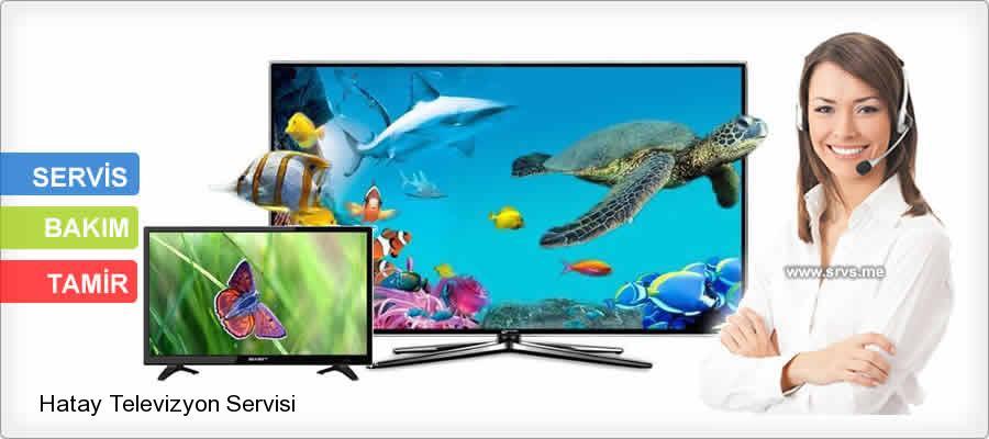 Hatay Hassa Televizyon Servisi